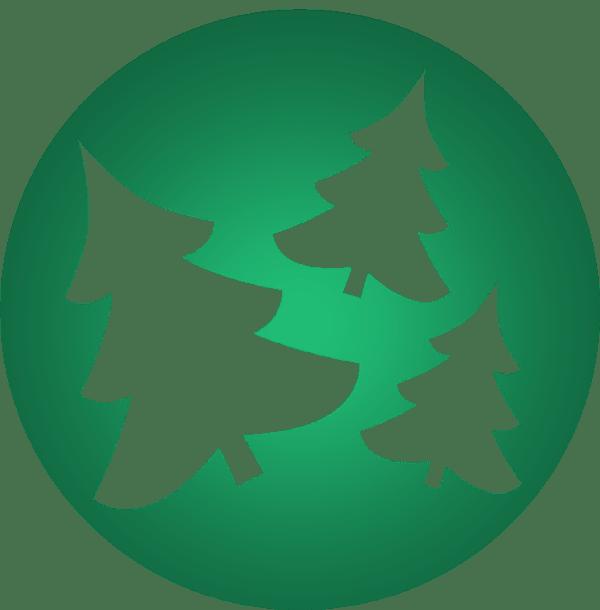 tipps und tricks hol dir dein weihnachtsbaum in berlin. Black Bedroom Furniture Sets. Home Design Ideas