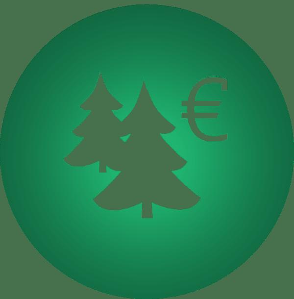 Discount-Weihnachtsbaum in Berlin