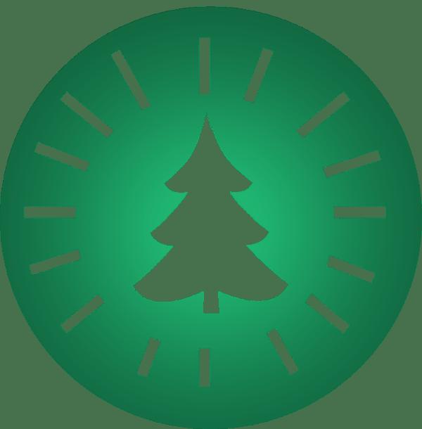 Weihnachtsbaum Komplettangebot für's Büro